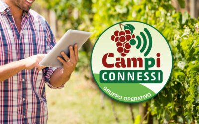 Gruppo Operativo Campi Connessi. Il primo anno di attività